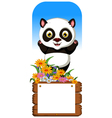 panda cartoon with blank board vector image vector image