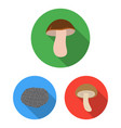 poisonous and edible mushroom flat icons in set vector image