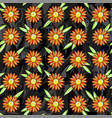 seamless pattern of orange daisies vector image