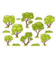 set of different trees and bushes vector image