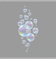 soap bubbles realistic 3d water soapy balls vector image