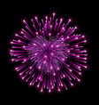 beautiful heart-firework pink romantic firework vector image
