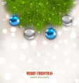 Christmas Composition with Fir Branches and Glass vector image