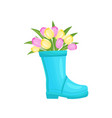 colorful tulips bouquet in blue vase boot vector image vector image