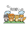 cute friends animal with hands together walking vector image vector image