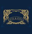 golden border swirl collection wedding luxury vector image vector image