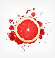 grapefruit with splash vector image vector image