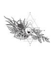 black and white bird skull vector image