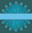 Card with peacock feathers vector image vector image