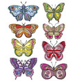 set of beautiful and colorful butterflies vector image