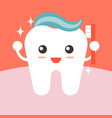 tooth cleaning itself with toothpaste vector image