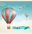 air balloon and birds vector image vector image