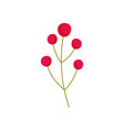 berries branch nature foliage decoration icon vector image