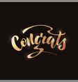 handwritten phrase - congrats vector image vector image