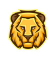 mascot stylized lion head vector image vector image