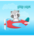 postcard poster cute raccoon on plane in vector image vector image