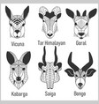 set of polygonal head animals polygonal logos vector image vector image