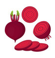 set with beet vector image vector image