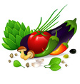Vegetables set on white background vector image vector image