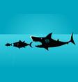 bigger fish prey on smaller fish vector image vector image