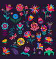 cartoon mexican flowers buds and blossoms vector image