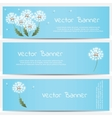 Dandelion banner on blue background vector image