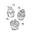 hand drawn graphic sweet food design vector image vector image