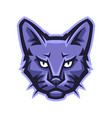 mascot stylized cat head vector image vector image