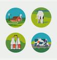 set dairy milk farm round shaped icons vector image