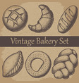 vintage hand drawn sketch style bakery set vector image