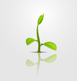 Sprout copy vector image