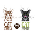 cat family logo vector image vector image