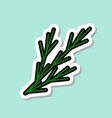 fennel sticker on blue background colorful vector image vector image