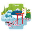 japan travel and attraction landmarks vector image vector image