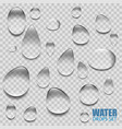 realistic transparent water drops vector image