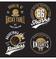 t-shirt design basketball fans for usa new york vector image vector image