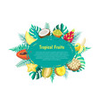 tropical fruits banner with exotic food oval frame vector image
