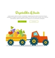 Vegetables Fruits Concept Web Banner vector image