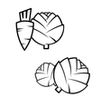 Carrotscabbage and artichokes vector image