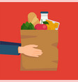cool flat style concept on grocery store and food vector image