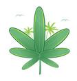 medical marijuana surfboard vector image vector image