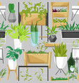 plants in flowerpots potted houseplants vector image