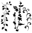 Collection for designers plant set vector image vector image