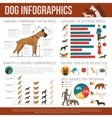 Dog infographics set vector image