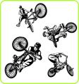BMX bicycle vector image vector image