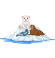 cartoon arctic animals on icebergs vector image vector image