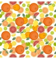 citrus pattern Fruit background Summer bright vector image vector image