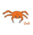 Cute cartoon crab vector image