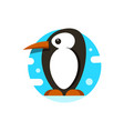 cute penguin icon in flat style cold winter vector image