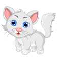 cute white cat cartoon expression vector image vector image